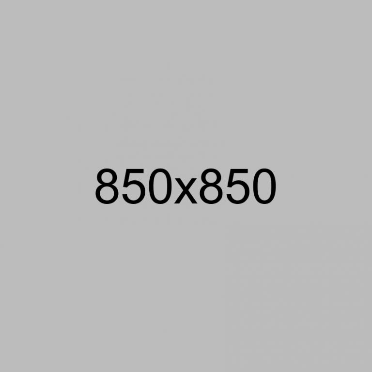 _0002_Calque-2